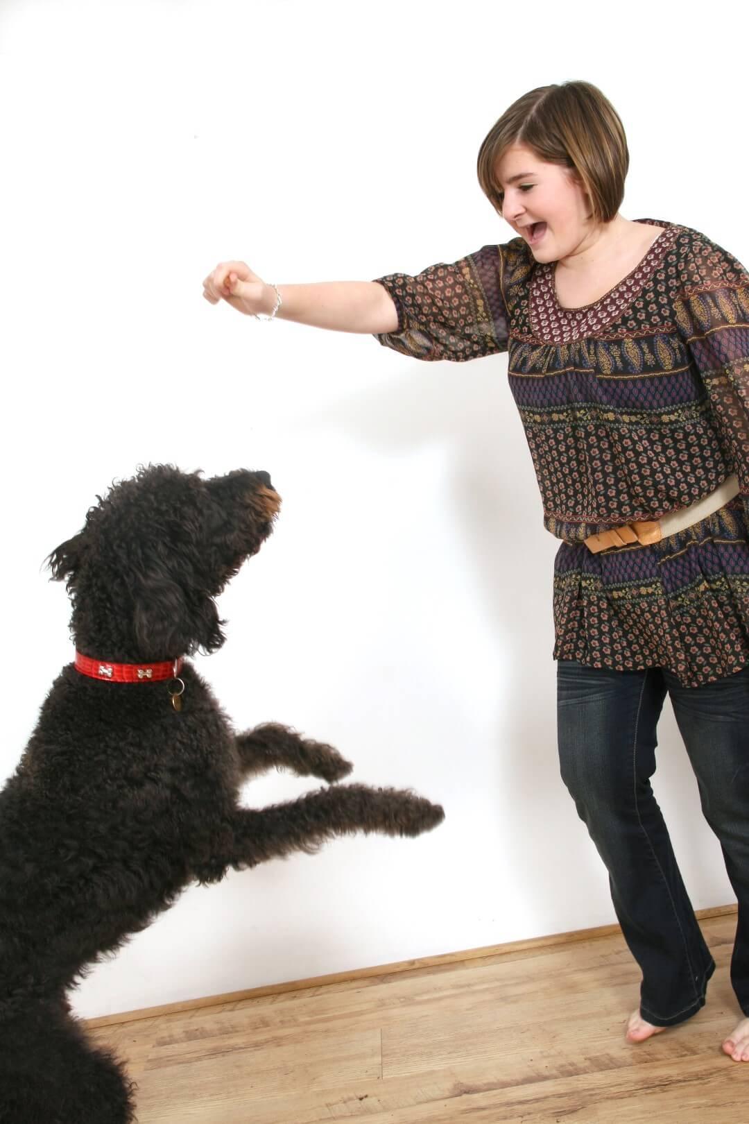 Pets Photography @ Photoface